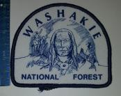 WashakieNFindianThread