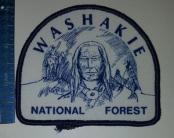 WashakieNFindianThread