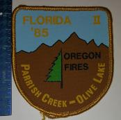 ParrishCreekOliveLakeORfiresFlorida1985thread