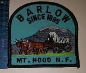 MtHoodNationalForestBarlow1895